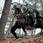 Robo Dog developed, Owned and Promoted By Google.