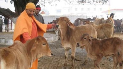 Incredible Journey of Yogi Adityanath